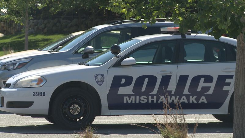 Police are seeing an increase in vandalism in Mishawaka this year.