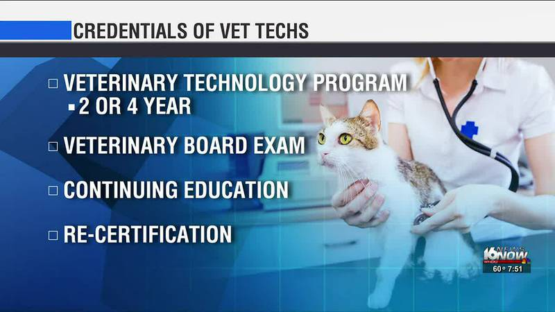 October 11-17 is National Veterinary Technician Week.
