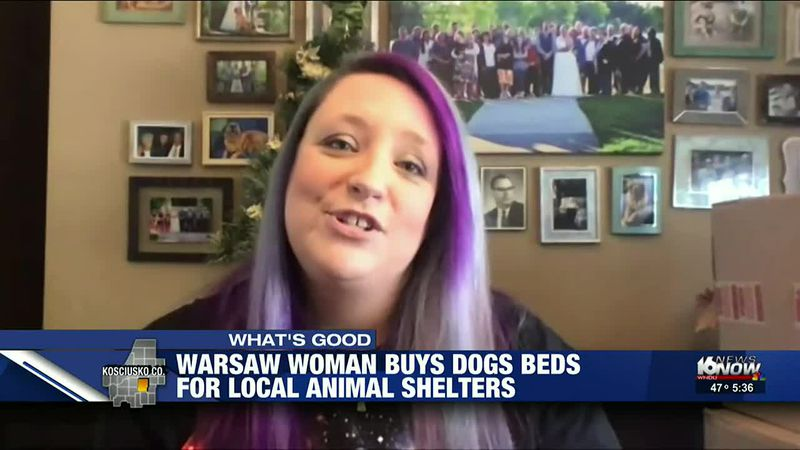 Black Friday shopping with a purpose: Warsaw woman donates dog beds to local shelters