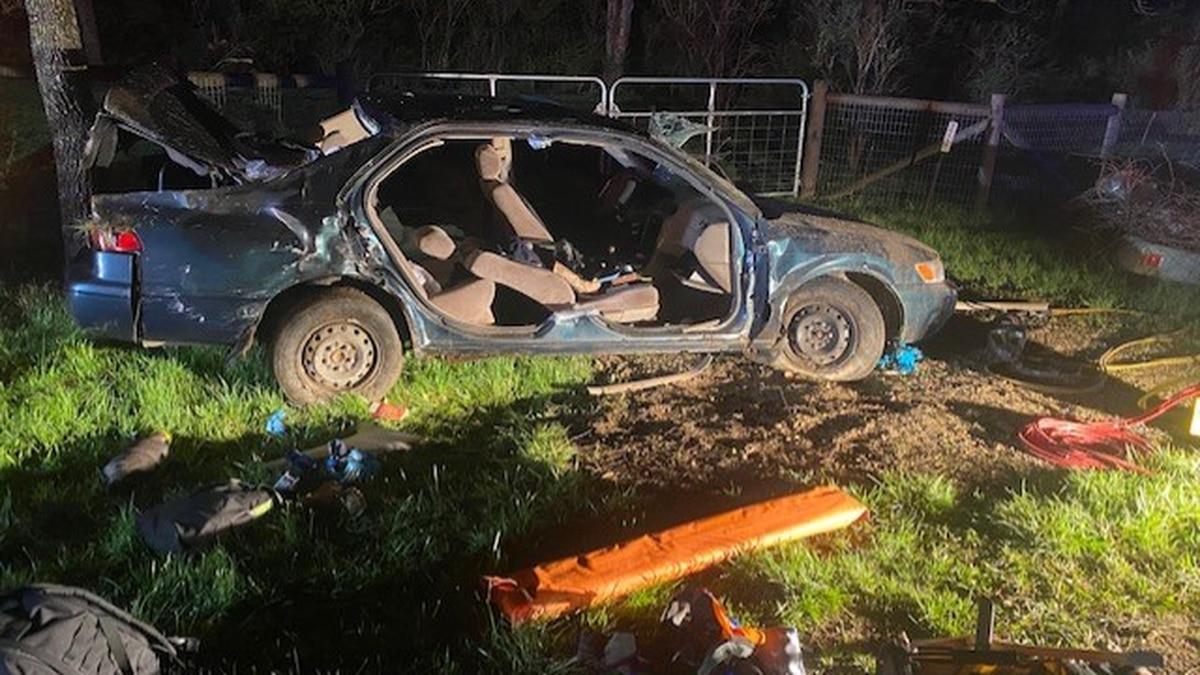 One car crash hospitalizes two