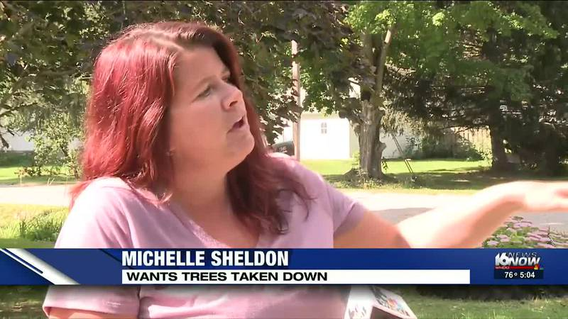 If you have problems with trees similar to this one in Berrien County, you are encouraged to...