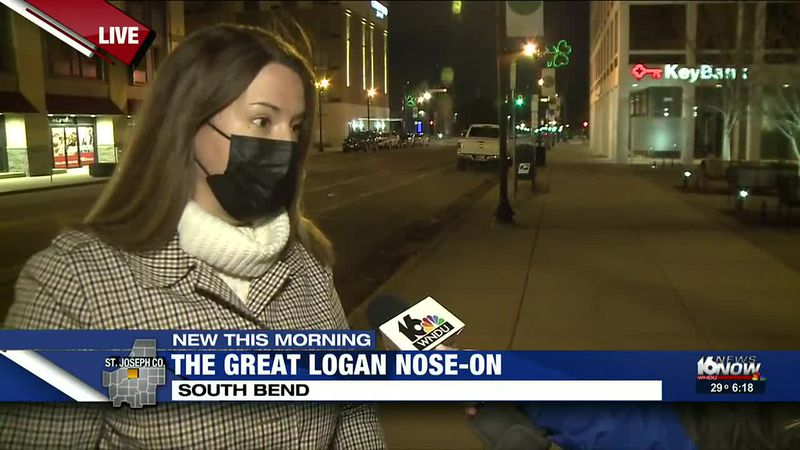 Great LOGAN Nose-On
