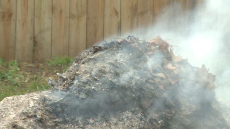 St. Joseph County Council votes to override veto of leaf-burning ordinance