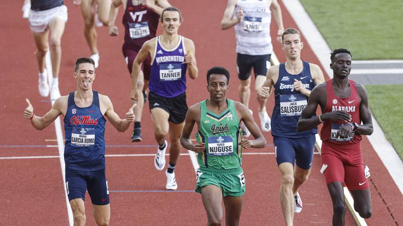 Runners compete in a semifinal of the men's 1,500 meters during the NCAA Division I Outdoor...
