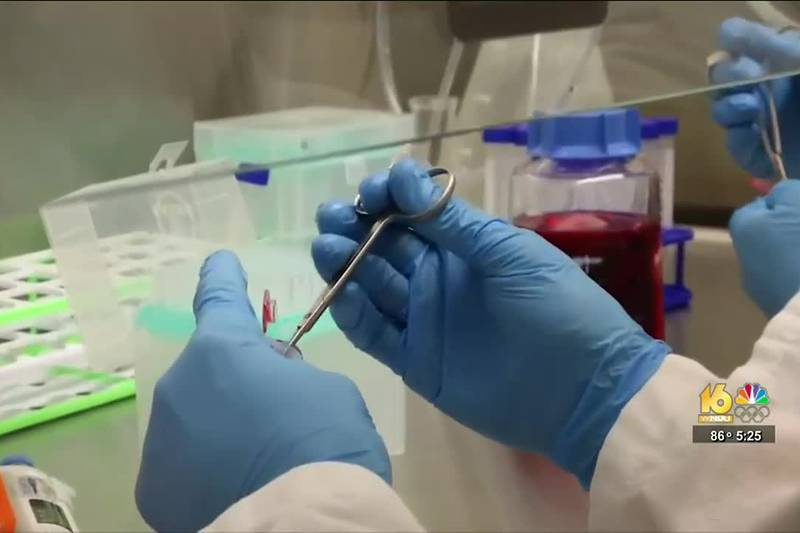 An early trial is showing promise in patients with different cancers, like lung and bladder,...