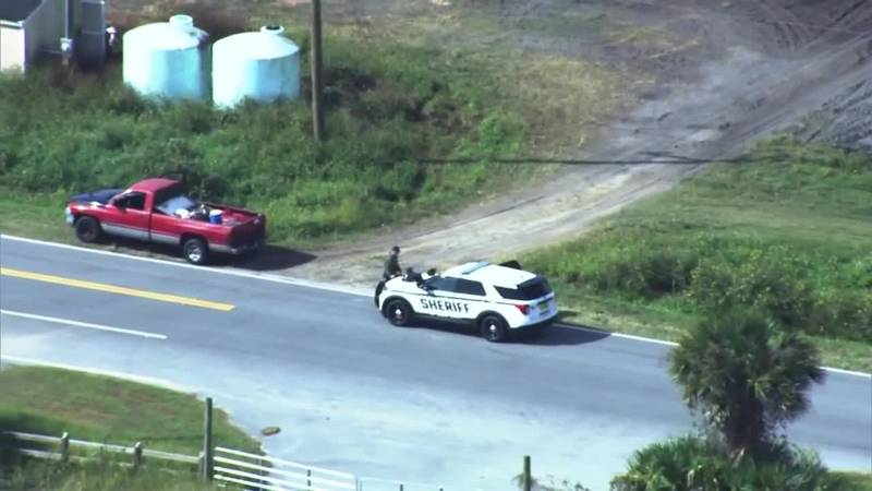 Police in Florida got a surprise when they pulled over a 65-year-old man for having an expired...
