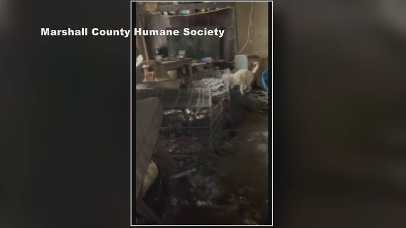Marshall County Humane Society responds to animal hoarding case in Plymouth