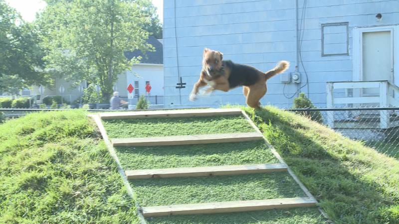 City leaders cut the ribbon for Goshen's first public dog park Friday morning before giving the...