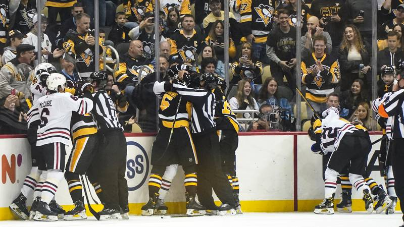 Fans cheer as three altercations break out along the boards during the second period of an NHL...
