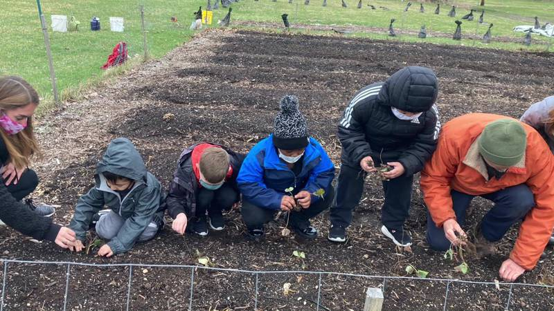 At El Campito Child Development Center, the children are really interested in growing food in...