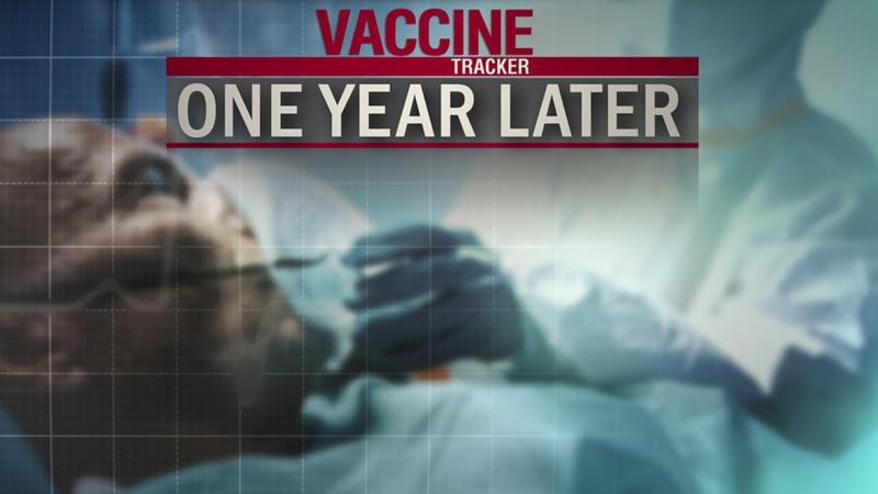 Vaccine Tracker: One Year Later