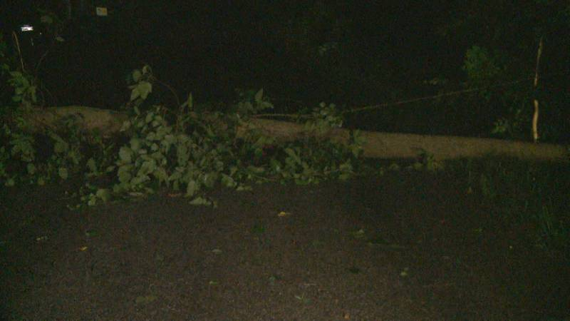 On Quince Road in Plymouth, a tree and power line both went down as a result of the storm...