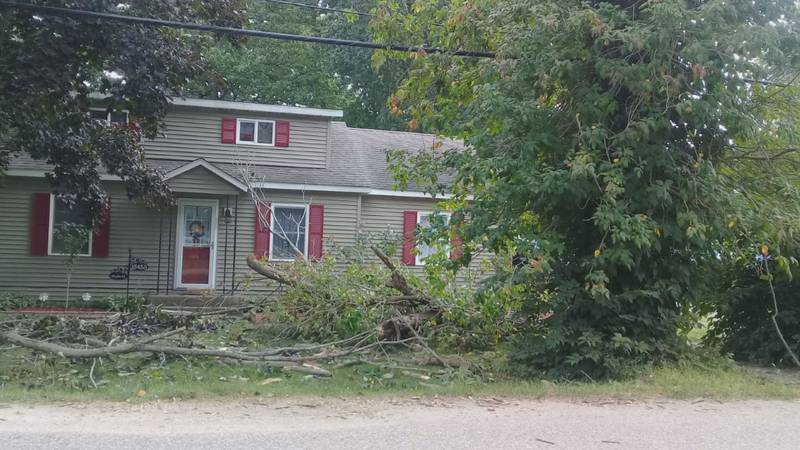 Most people should be able to feel safe in their front yard. But for Michigander Michelle...